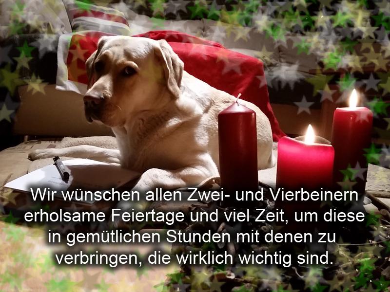 Wir wünschen uns allen erholsame und glückliche Feiertage!