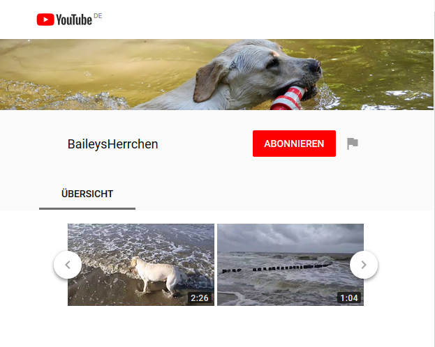 Bailey auf YouTube